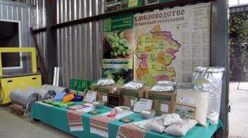 Мероприятия к Дню работников сельского хозяйства